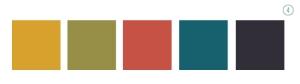 Fall Colors Options 4